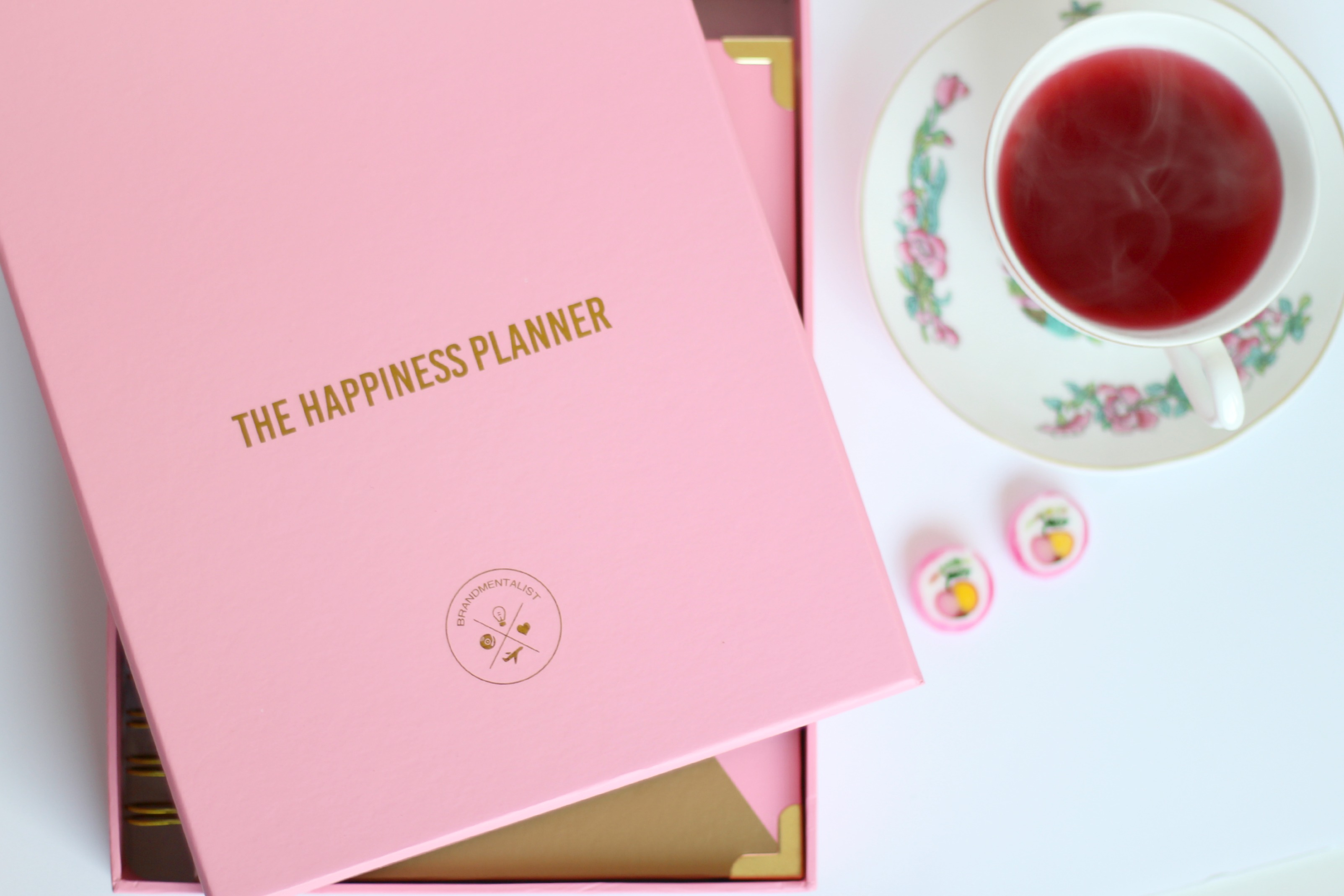 Pink-Happiness-Planner-Review